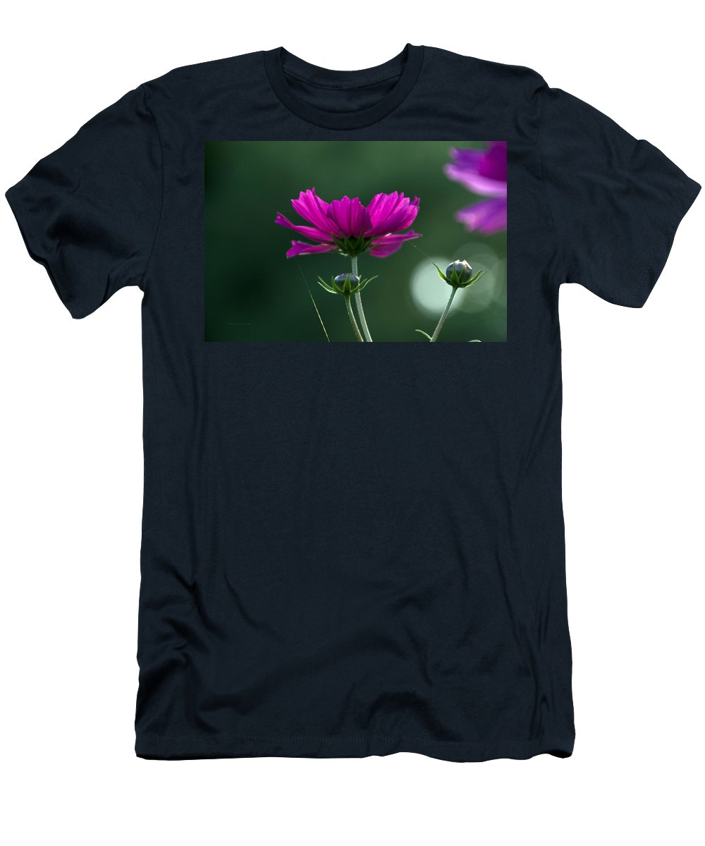 Flower Men's T-Shirt (Athletic Fit) featuring the photograph Early Dawns Light On Fall Flowers 03 by Thomas Woolworth