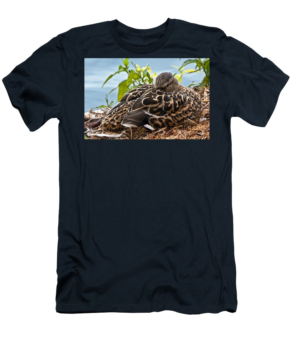 Anas Platyrhynchos Men's T-Shirt (Athletic Fit) featuring the photograph Eye Watching You by Kate Brown