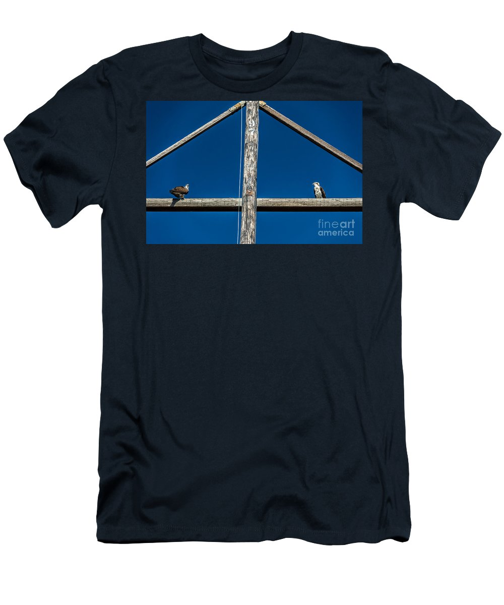 Osprey Men's T-Shirt (Athletic Fit) featuring the photograph Fish Envy by Dale Powell