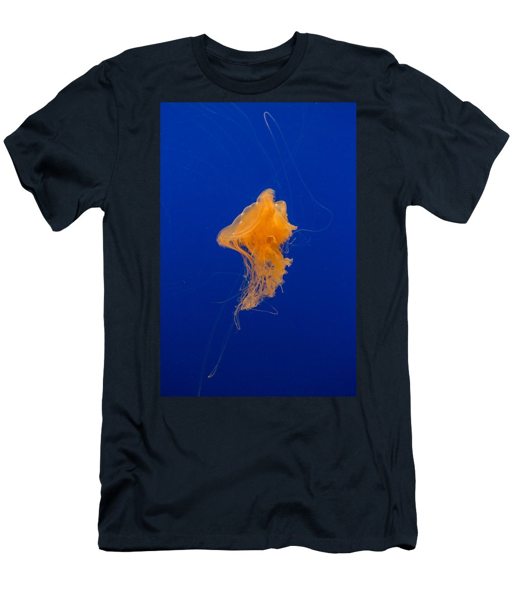 Jellyfish Men's T-Shirt (Athletic Fit) featuring the photograph Fried Egg Jelly 2 by Scott Campbell