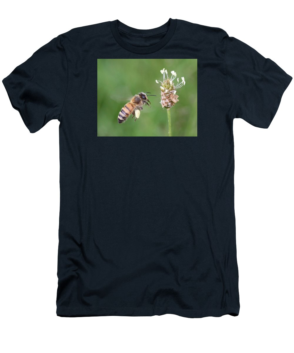 Honeybee Men's T-Shirt (Athletic Fit) featuring the photograph Full Basket Of Plantain Pollen by Lucinda VanVleck