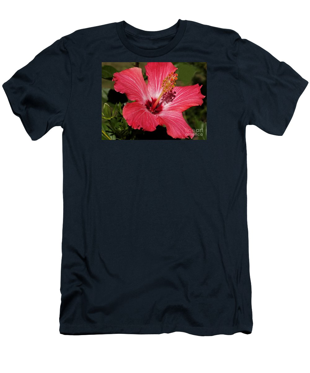 Hibiscus Men's T-Shirt (Athletic Fit) featuring the photograph Garden Beauty by Ann Horn