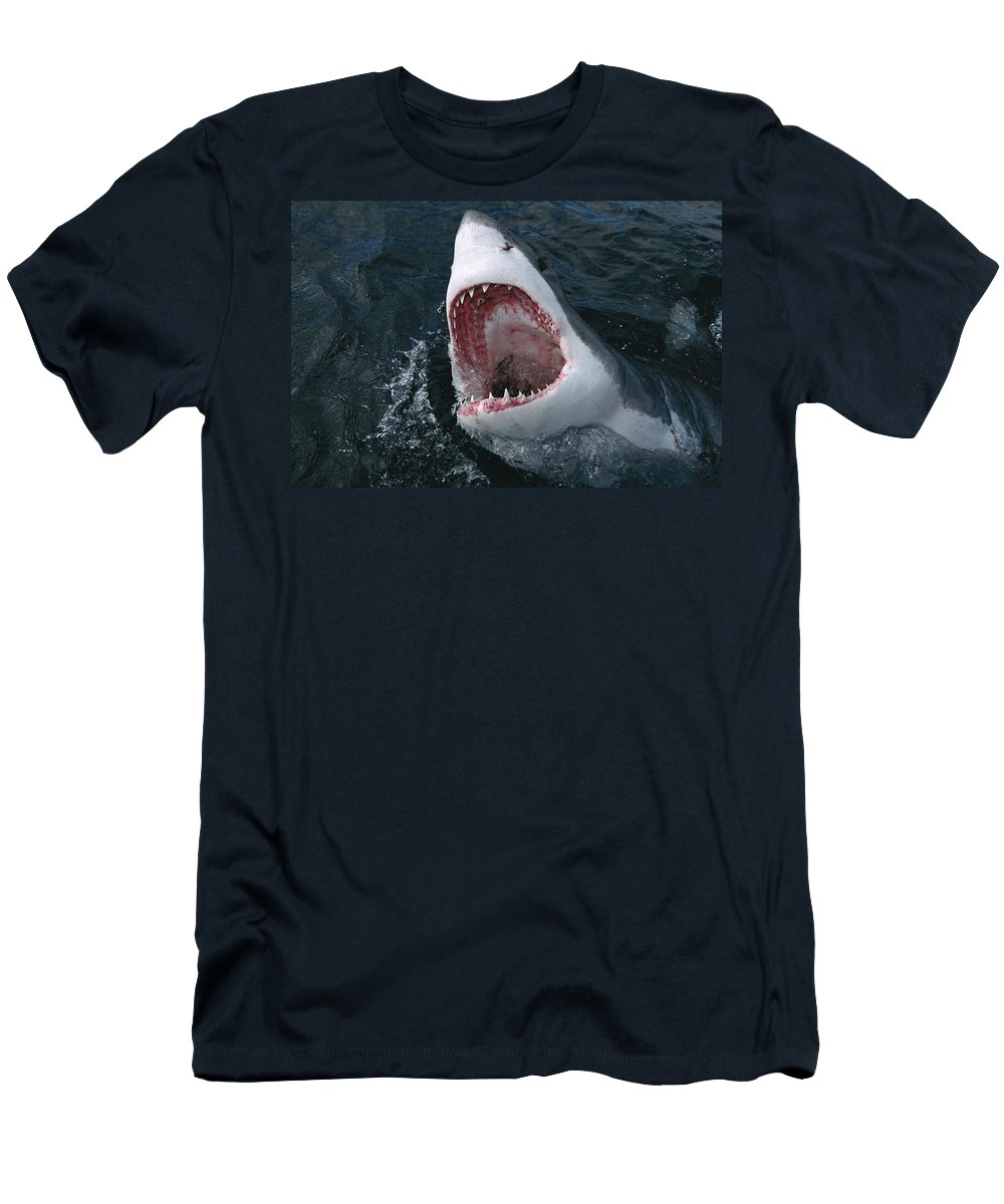 00700424 Men's T-Shirt (Athletic Fit) featuring the photograph Great White Shark by Mike Parry