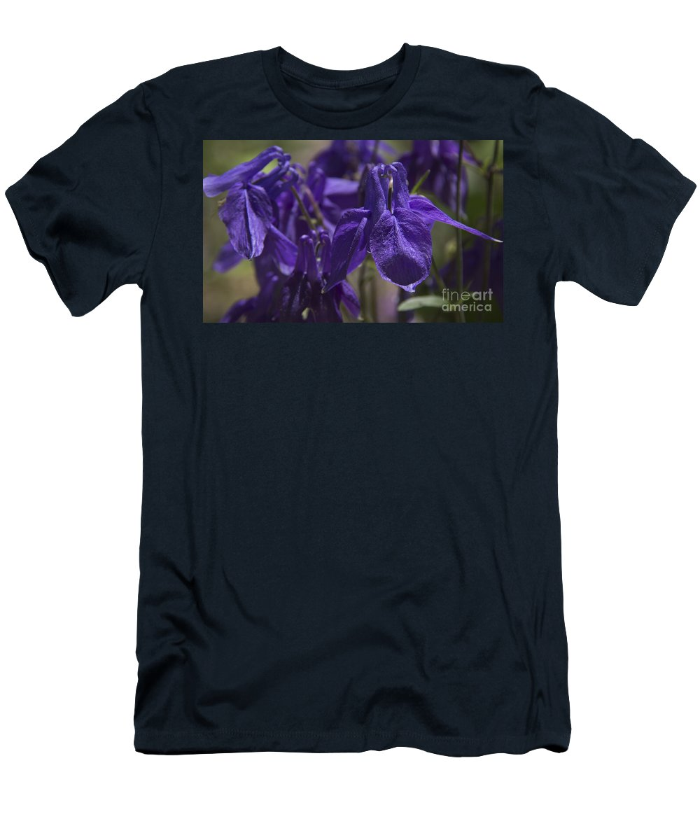 Columbine Men's T-Shirt (Athletic Fit) featuring the photograph Purple Colimbine 1 by Teresa Mucha