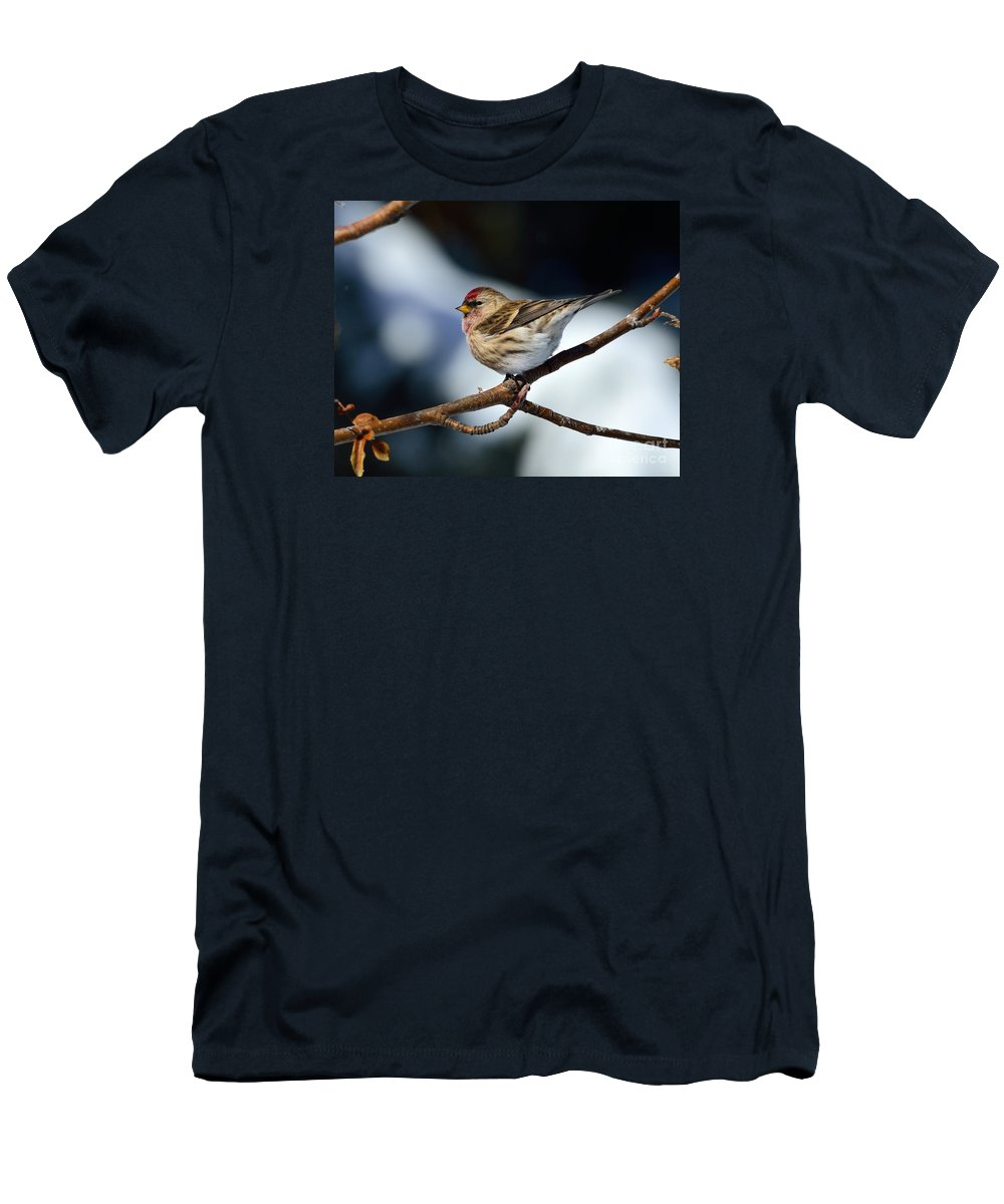 Common Men's T-Shirt (Athletic Fit) featuring the photograph Red Poll by Brad Christensen