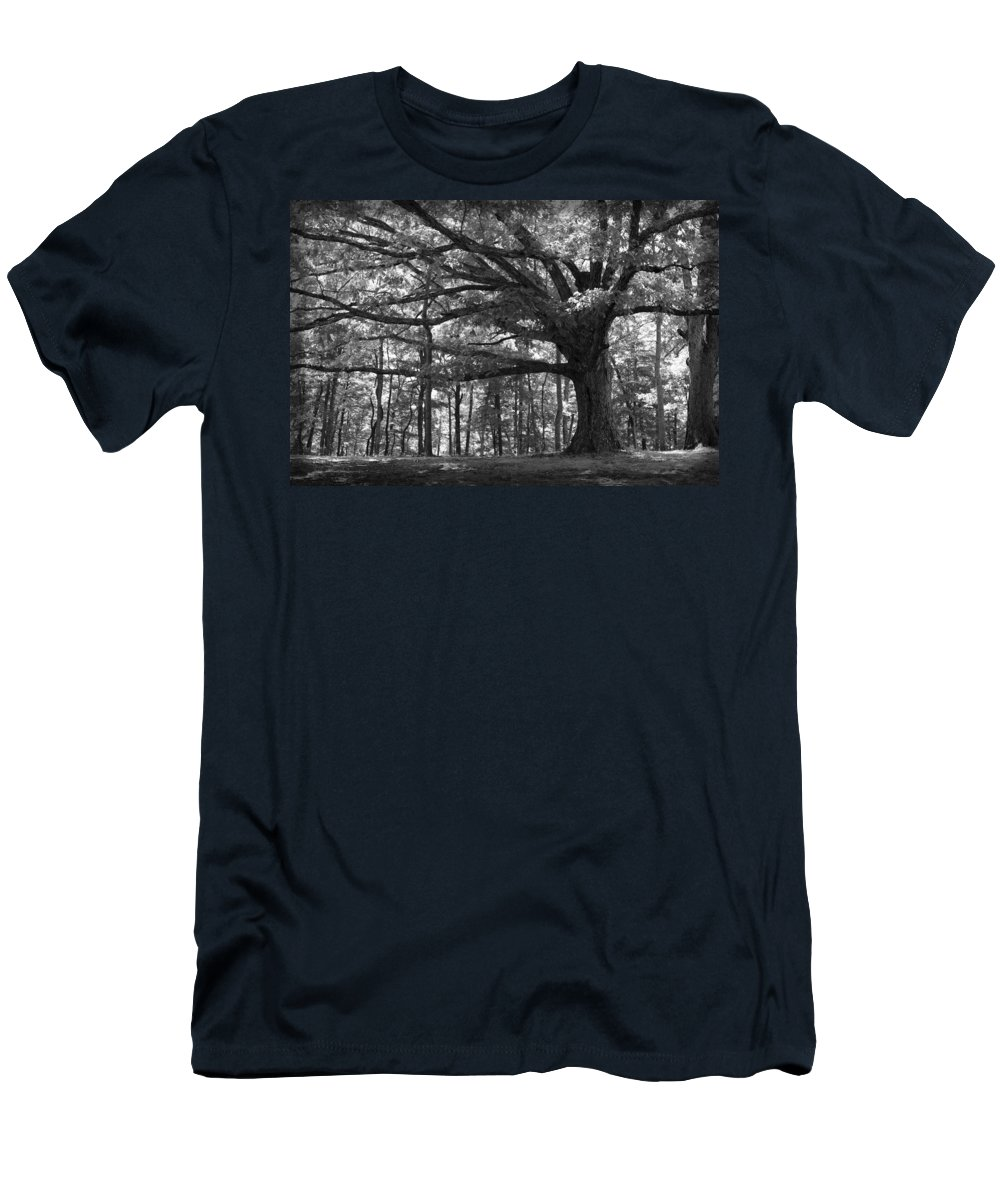 Tree Men's T-Shirt (Athletic Fit) featuring the photograph Shelter Me by Shari Jardina
