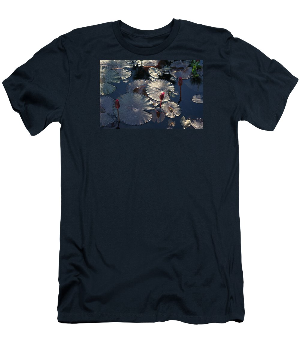 Waterlilies Men's T-Shirt (Athletic Fit) featuring the photograph Silver Lilypads by Nancy Chenet