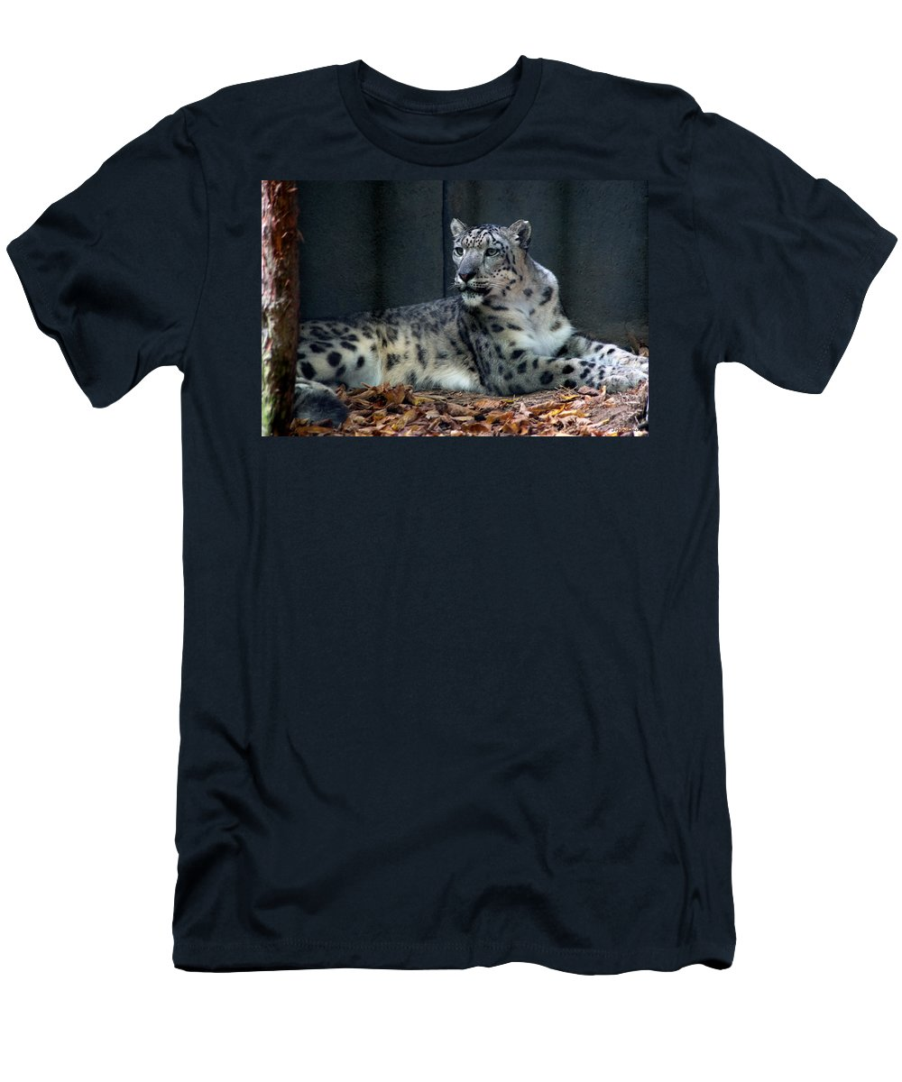 Cat Men's T-Shirt (Athletic Fit) featuring the photograph This Is My Corner by John Dauer