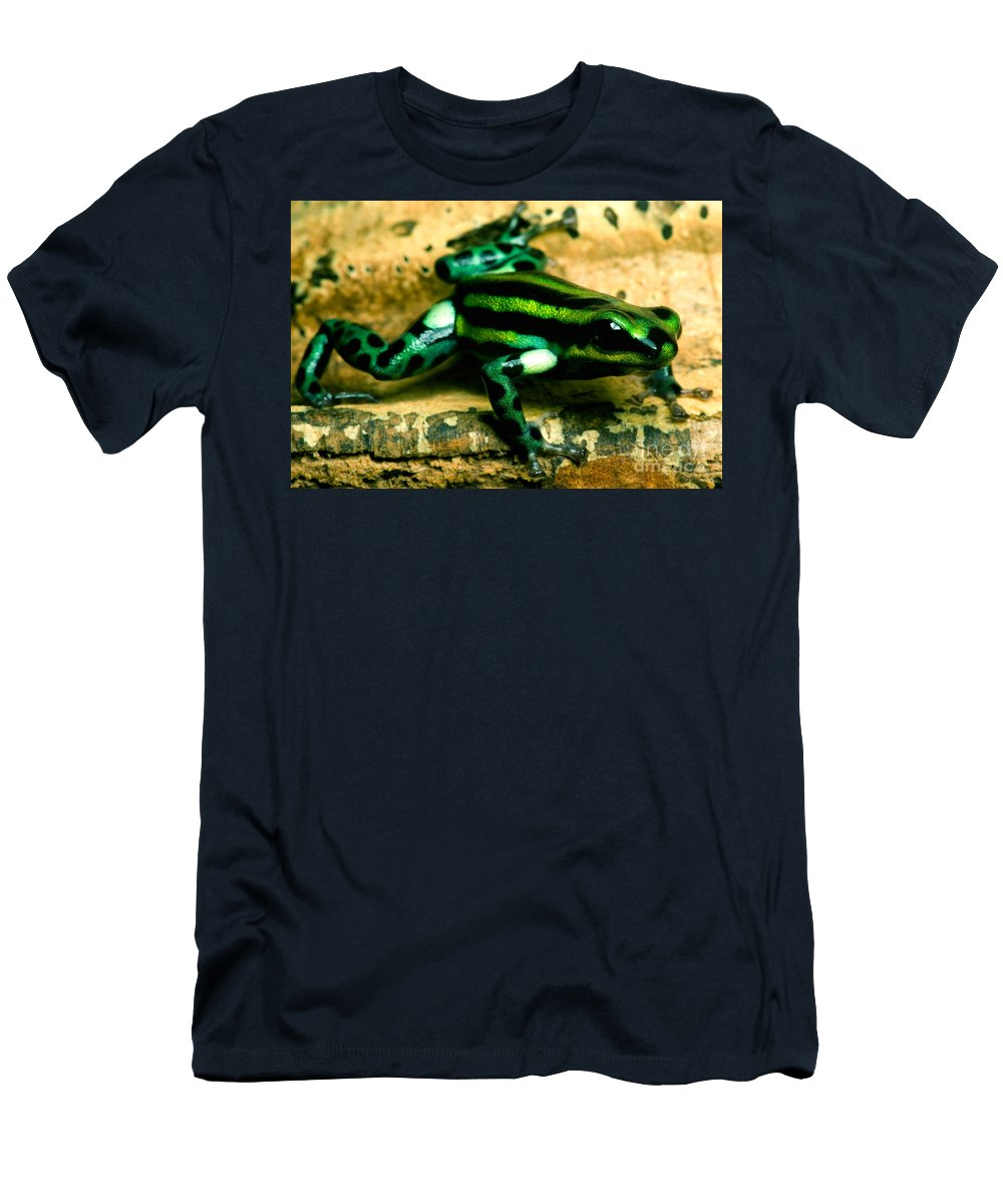 Ranitomeya Lamasi Men's T-Shirt (Athletic Fit) featuring the photograph Pasco Poison Frog by Dant� Fenolio
