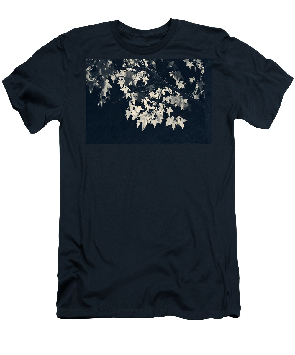 Trees Men's T-Shirt (Athletic Fit) featuring the photograph Falling Stars by Laurie Search