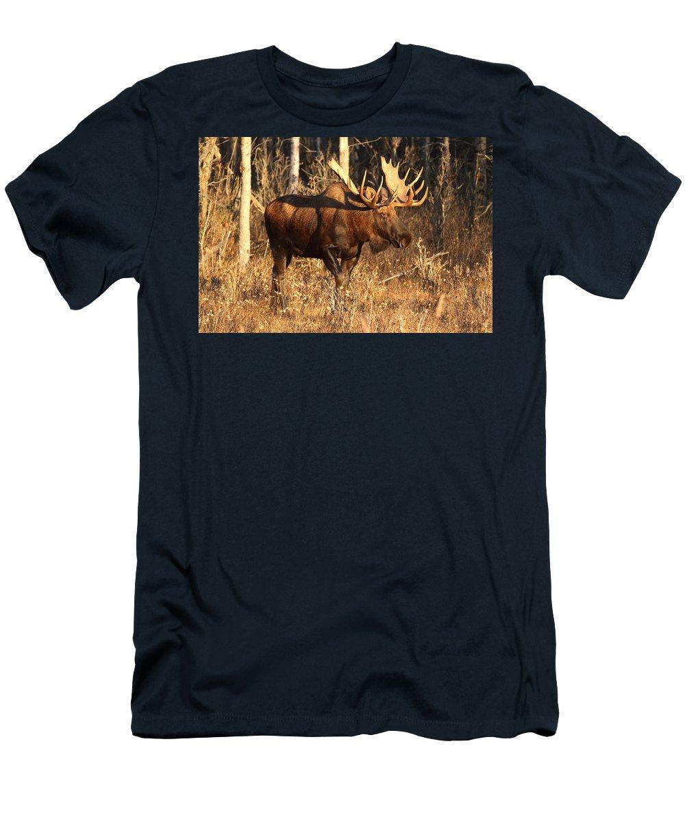 Doug Lloyd Men's T-Shirt (Athletic Fit) featuring the photograph Golden Light by Doug Lloyd