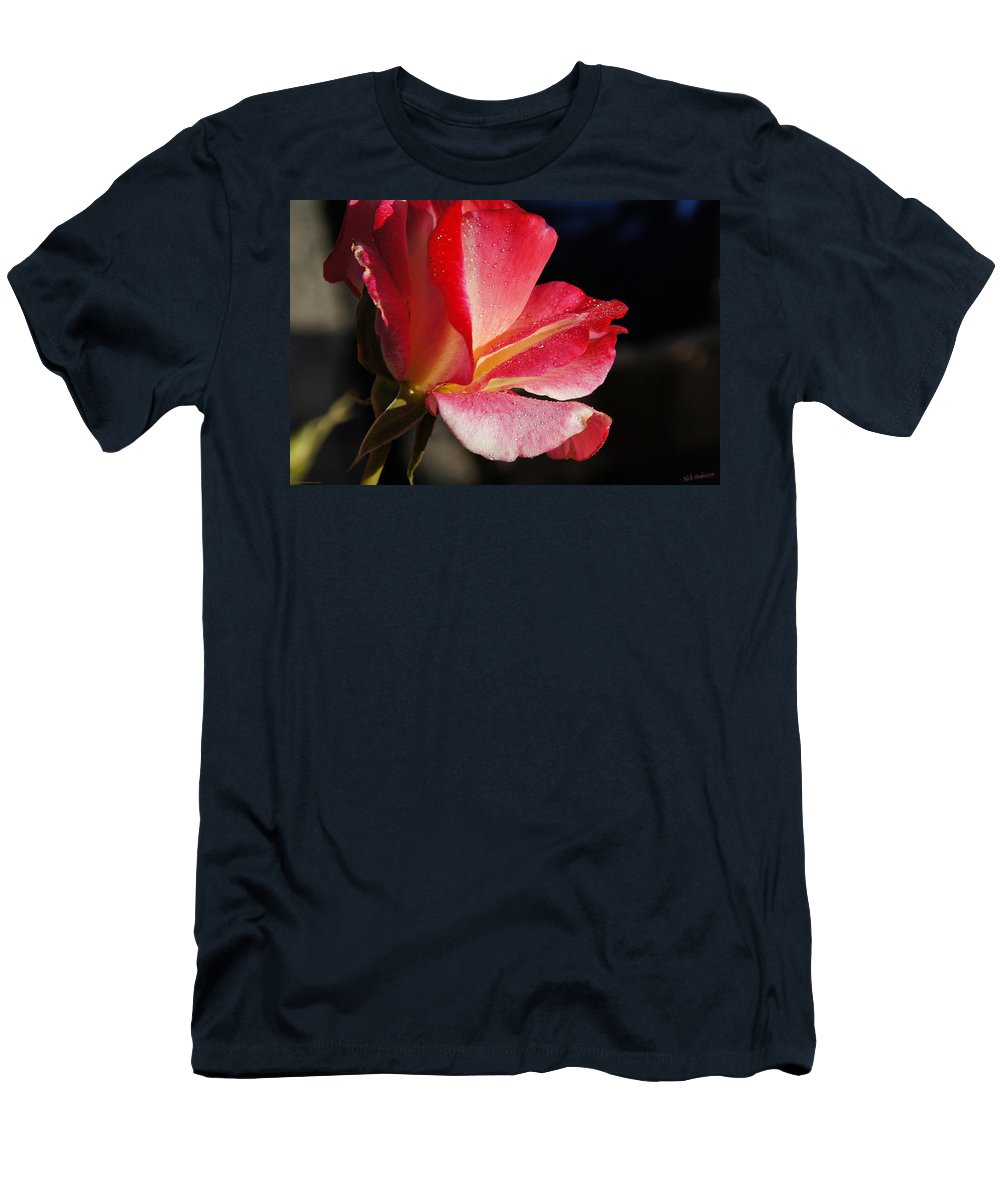 Rose Men's T-Shirt (Athletic Fit) featuring the photograph Open Rose After The Rain by Mick Anderson
