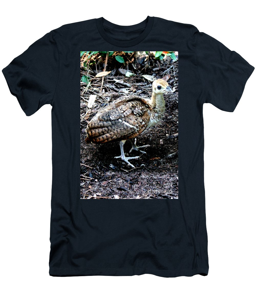 Peachick Men's T-Shirt (Athletic Fit) featuring the photograph Peacock Baby by Kathy White