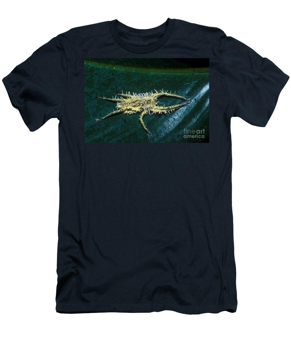 Predatory Tropical Fungus Men's T-Shirt (Athletic Fit) featuring the photograph Predatory Tropical Fungus by Dante Fenolio