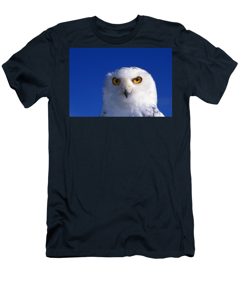 Outdoors Men's T-Shirt (Athletic Fit) featuring the photograph Snowy Owl by Natural Selection William Banaszewski