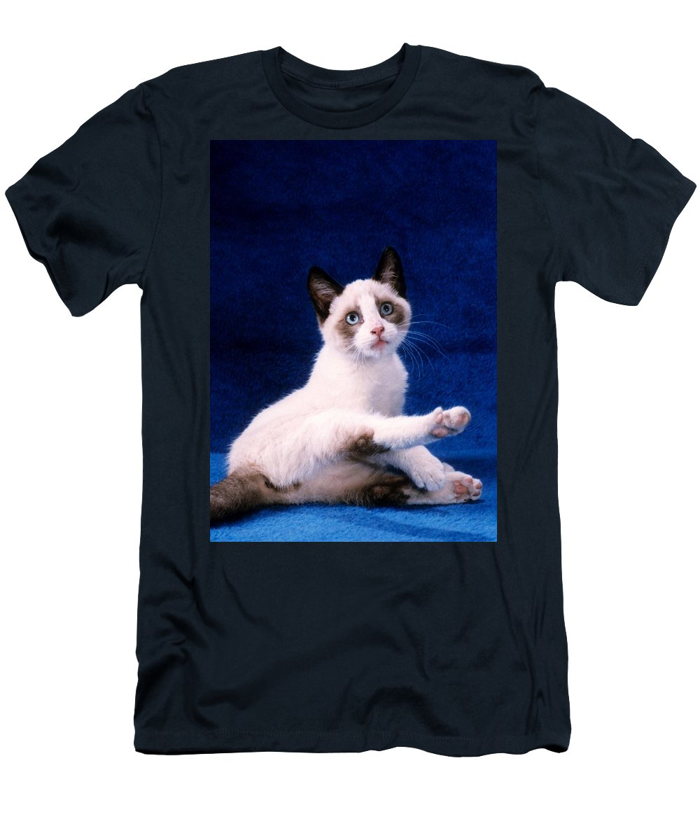 Youngster Men's T-Shirt (Athletic Fit) featuring the photograph Young Mixed Breed Grooms by Larry Allan