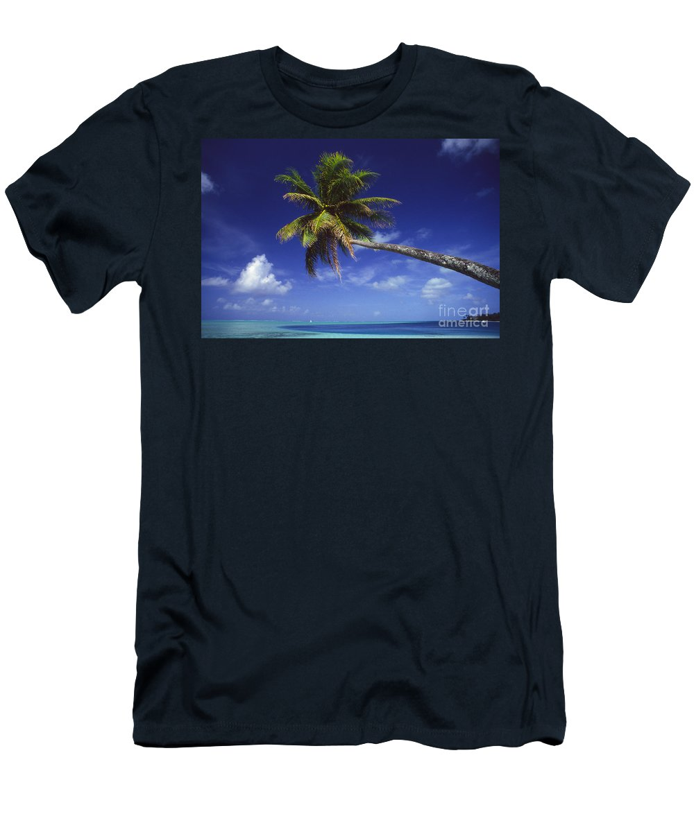 Beach Men's T-Shirt (Athletic Fit) featuring the photograph Bora Bora, Palm Tree by Ron Dahlquist - Printscapes