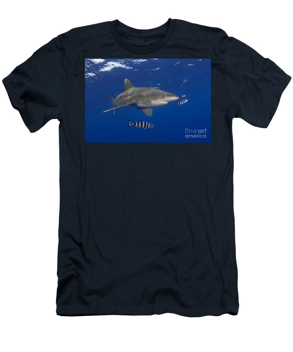 Carcharhinus Men's T-Shirt (Athletic Fit) featuring the photograph Oceanic Whitetip Shark by Dave Fleetham - Printscapes