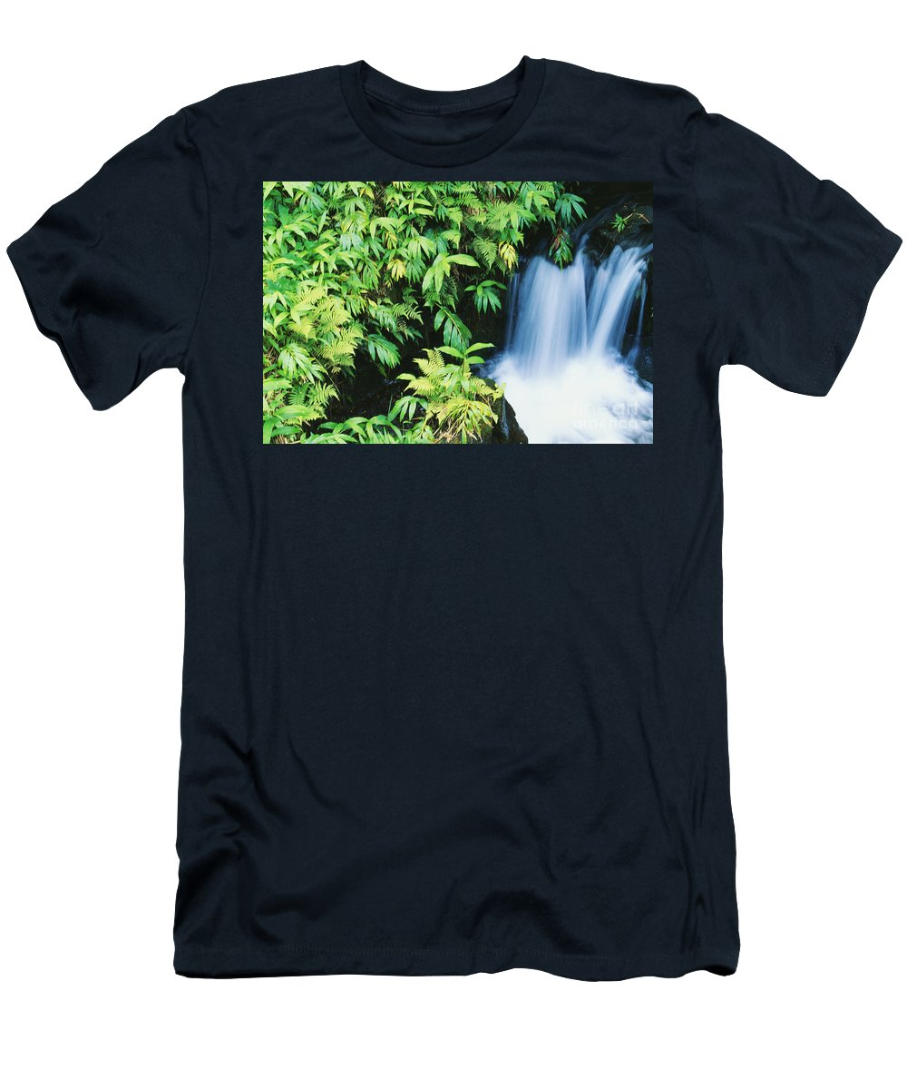 Akaka Men's T-Shirt (Athletic Fit) featuring the photograph Akaka Falls State Park by Ron Dahlquist - Printscapes