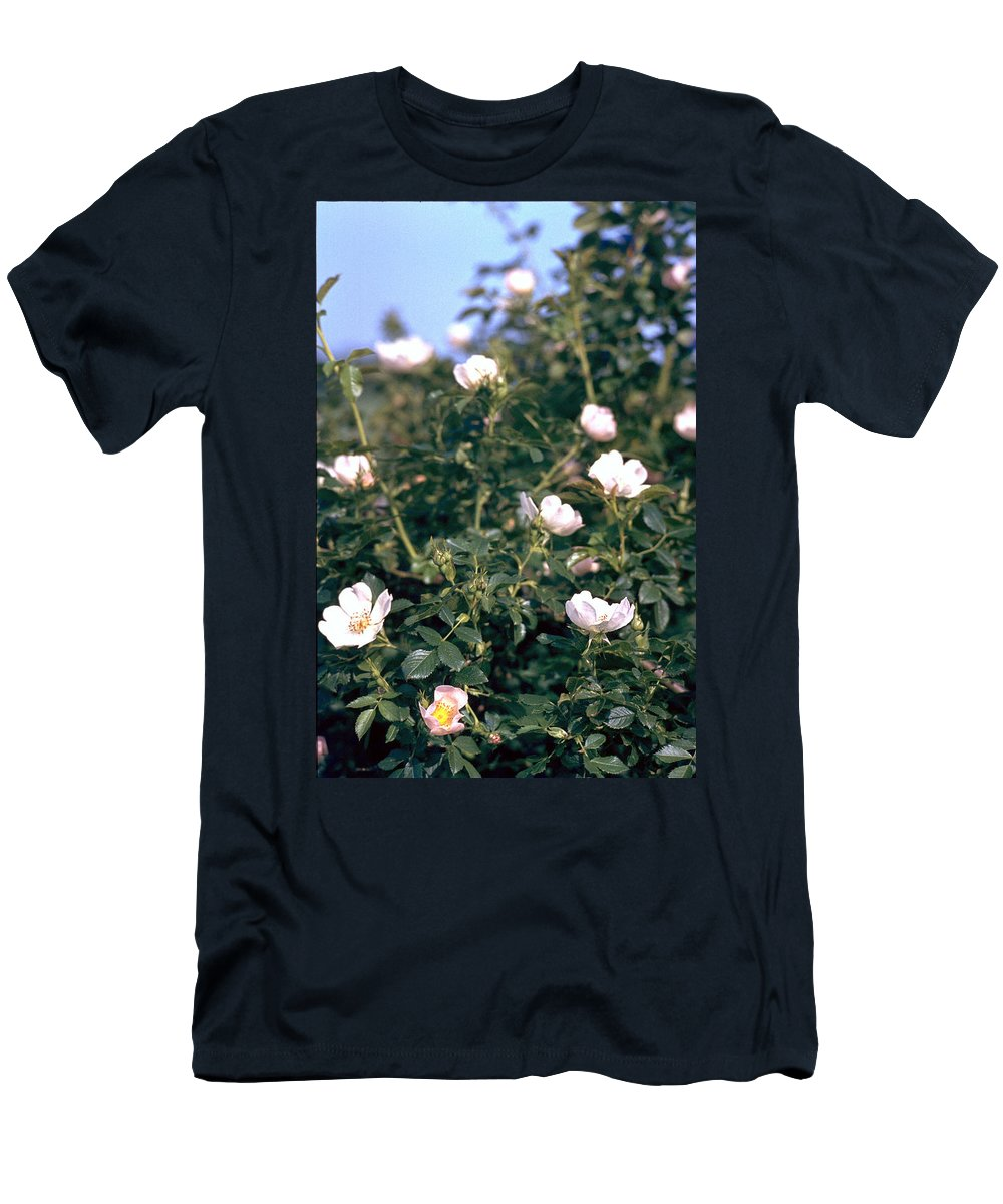 Anemone Men's T-Shirt (Athletic Fit) featuring the photograph Anemone by Flavia Westerwelle
