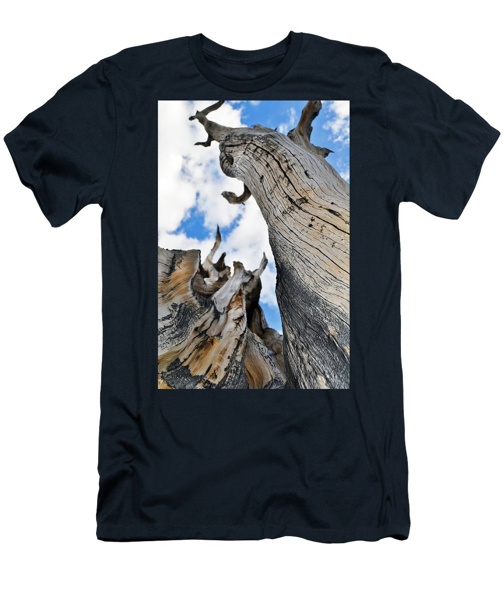 Great Basin National Park Men's T-Shirt (Athletic Fit) featuring the photograph Bristlecone Great Basin Portrait by Kyle Hanson