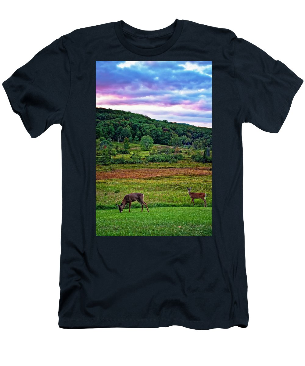 West Virginia Men's T-Shirt (Athletic Fit) featuring the photograph Canaan Valley Evening by Steve Harrington