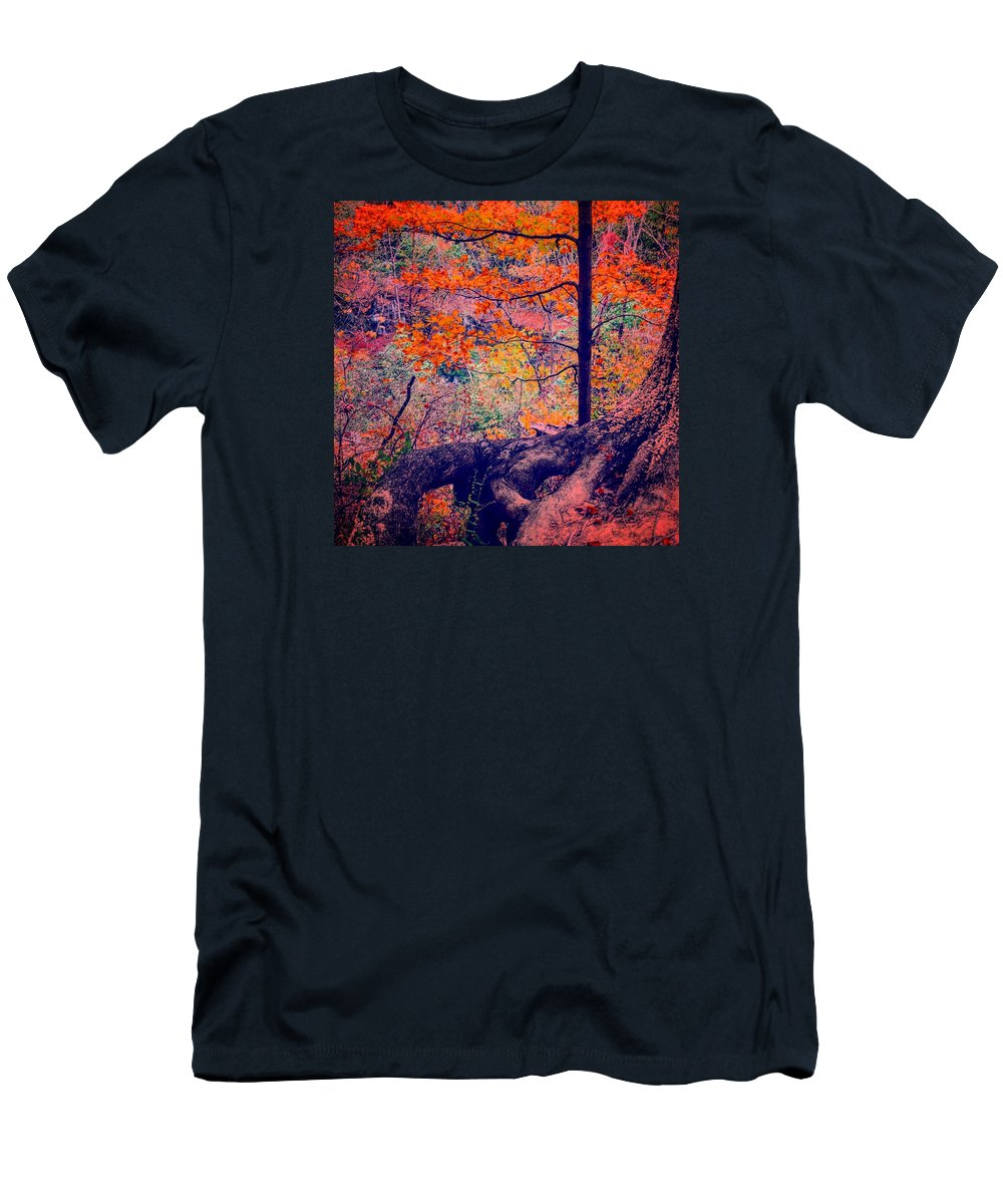 Nature Men's T-Shirt (Athletic Fit) featuring the photograph Colors In Nature by Daniel Baer