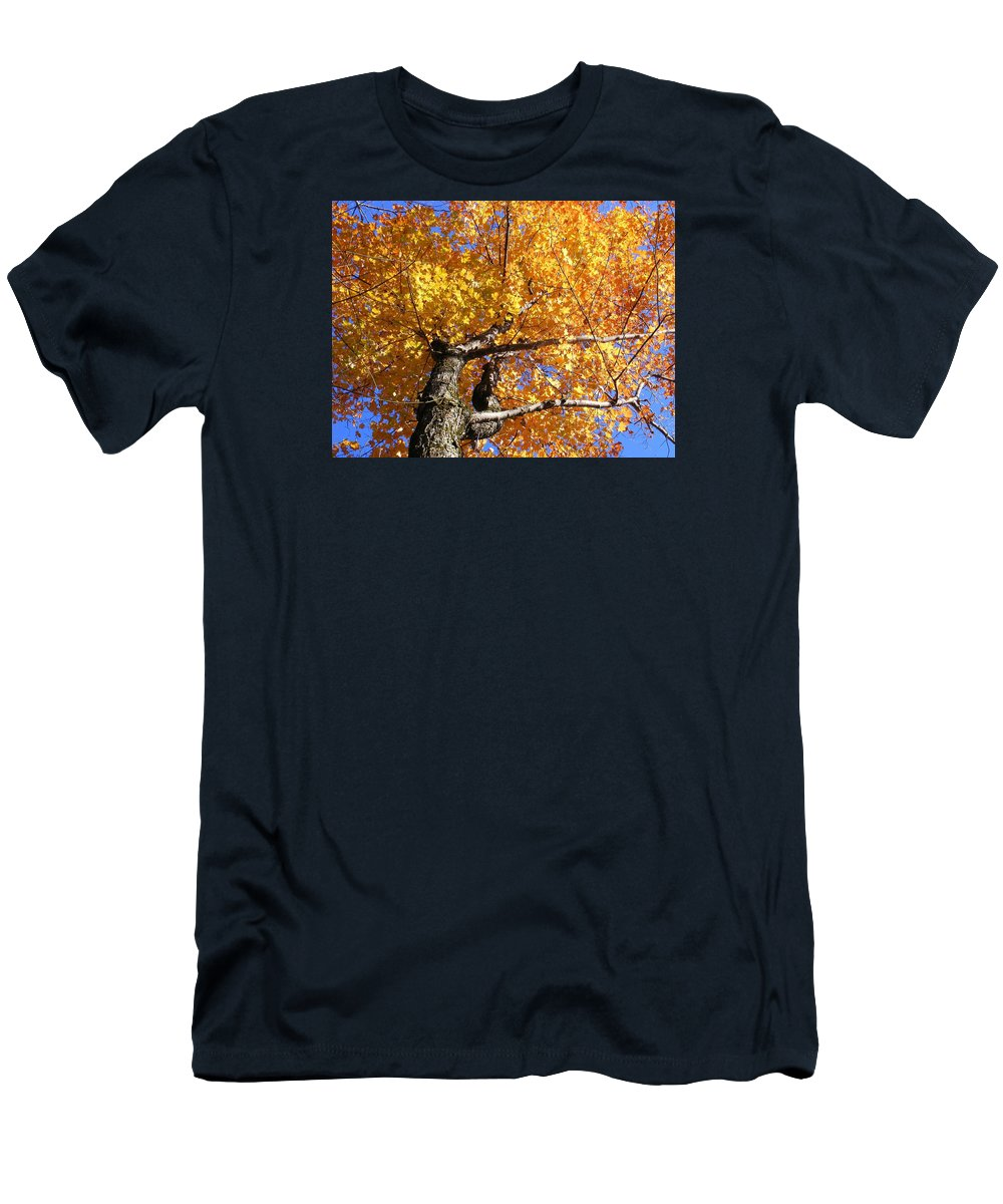 Trees Men's T-Shirt (Athletic Fit) featuring the photograph Crown Fire by Dave Martsolf