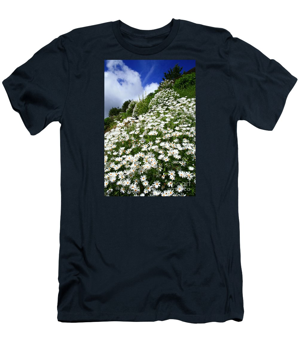 Countryside Men's T-Shirt (Athletic Fit) featuring the photograph Daisies by Gaspar Avila