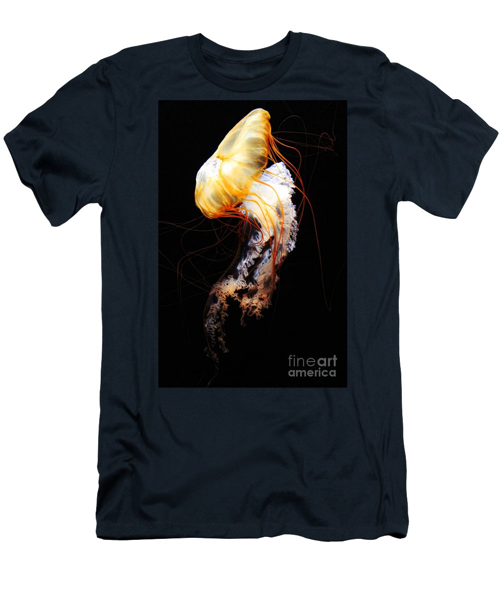 Jellyfish Photographs T-Shirts