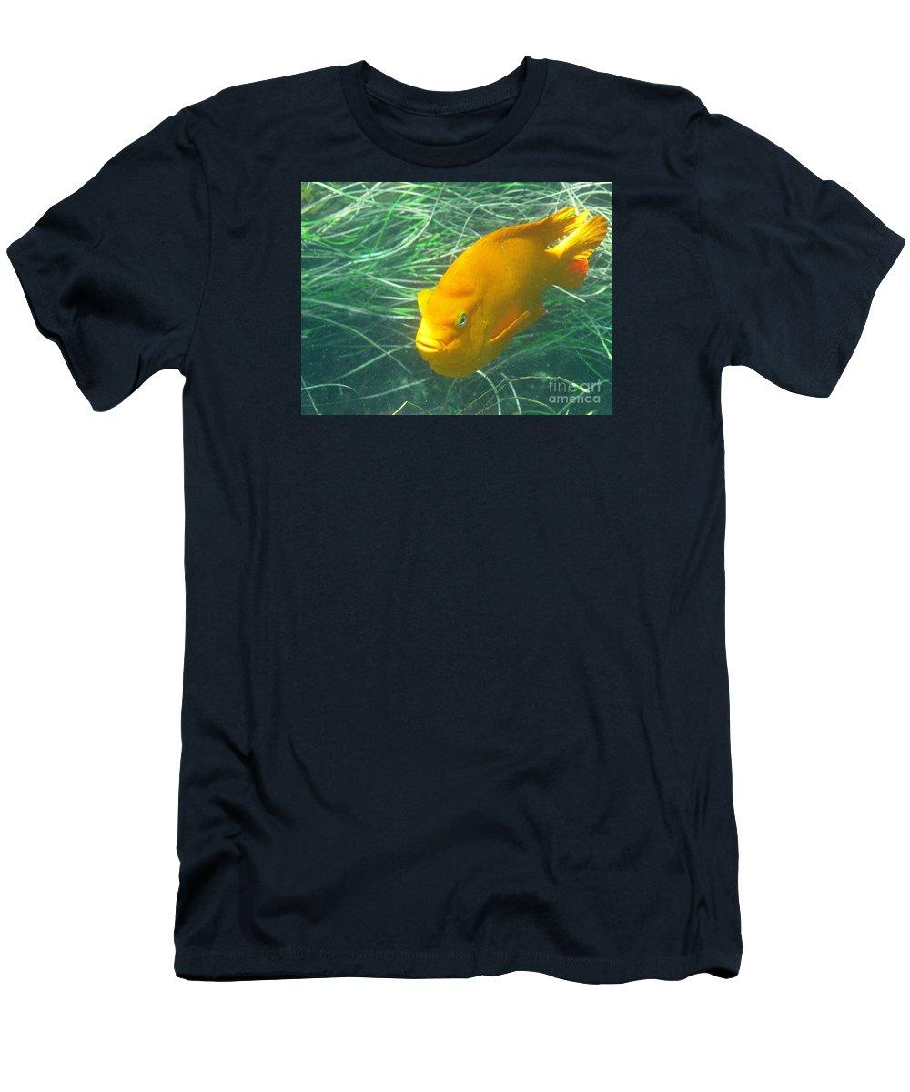 La Jolla Cove Men's T-Shirt (Athletic Fit) featuring the photograph Garibali 2 by Marta Robin Gaughen