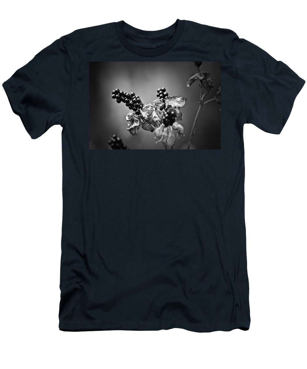 Flower Men's T-Shirt (Athletic Fit) featuring the photograph Gone To Seed Blackberry Lily by Teresa Mucha