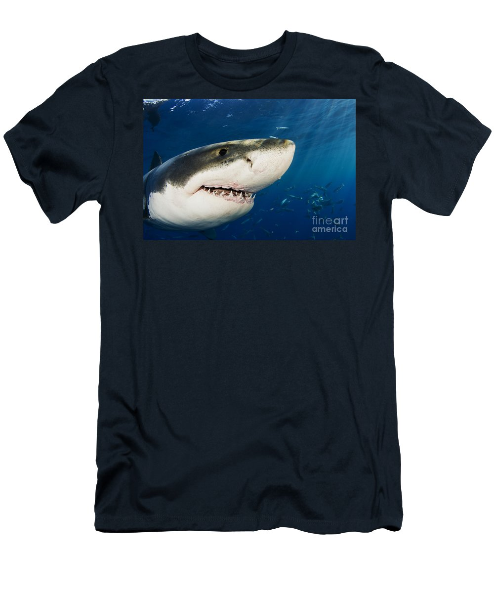 Beautiful Men's T-Shirt (Athletic Fit) featuring the photograph Great White Shark by Dave Fleetham - Printscapes
