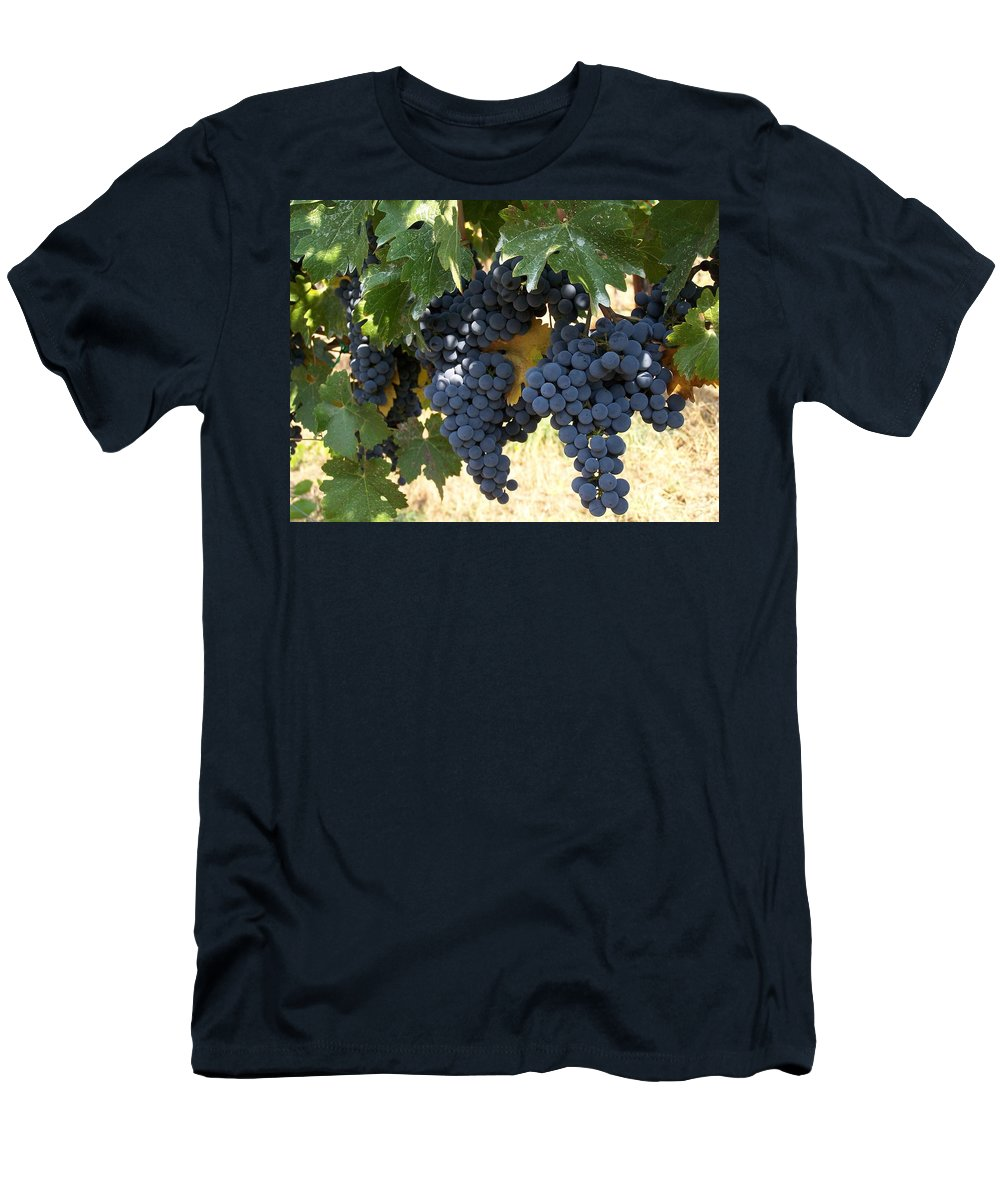 Grapes Men's T-Shirt (Athletic Fit) featuring the photograph Harvest Time by Gale Cochran-Smith