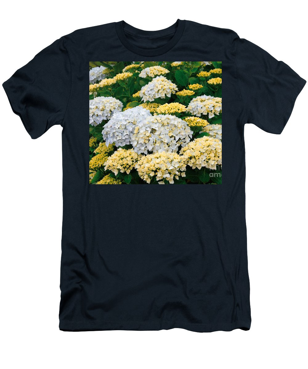 Hydrangea Men's T-Shirt (Athletic Fit) featuring the photograph Hydrangeas Blooming by Gaspar Avila