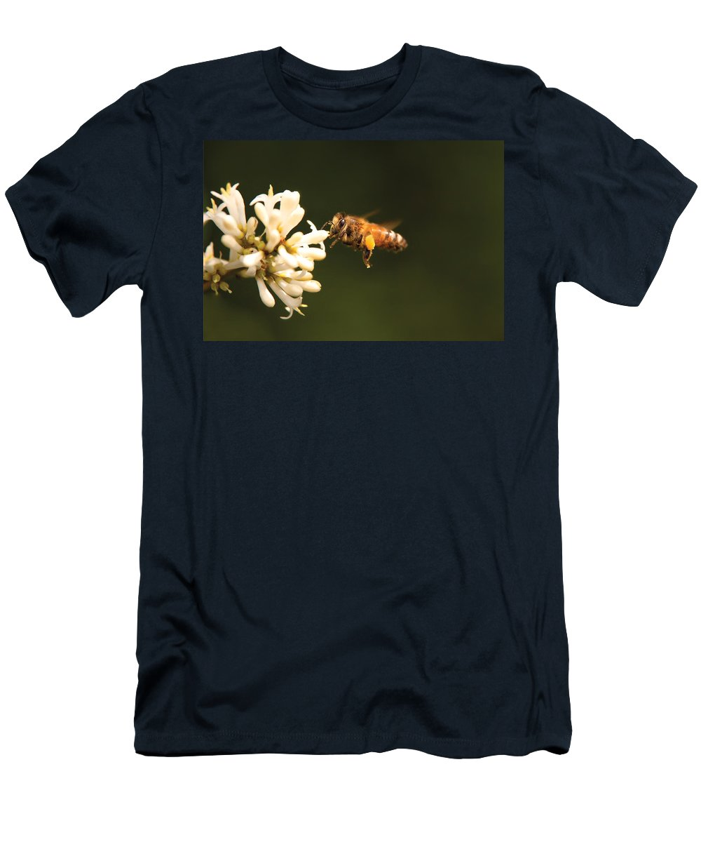 Savad Men's T-Shirt (Athletic Fit) featuring the photograph Insect - Bee - Honey I'm Home by Mike Savad