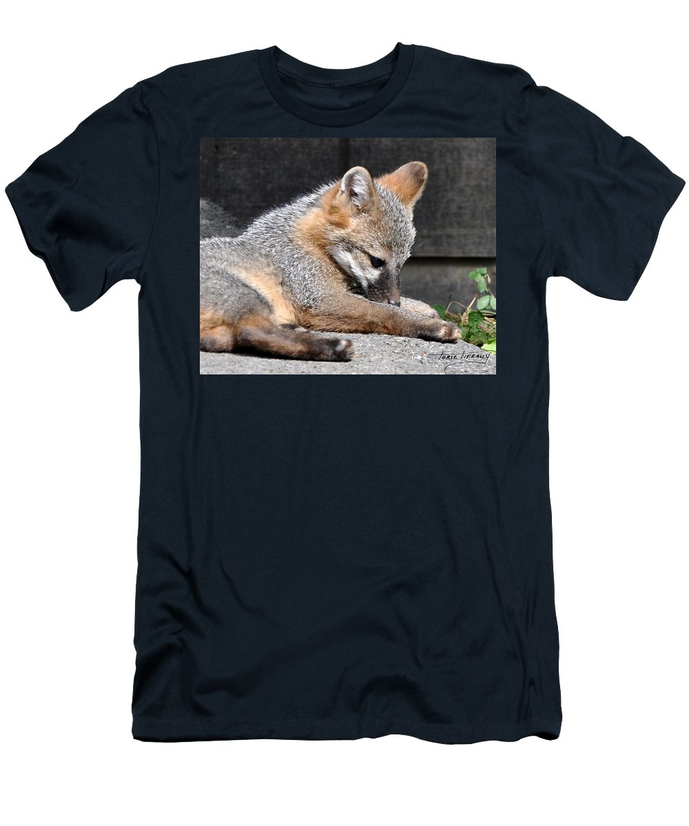 Kit Fox Men's T-Shirt (Athletic Fit) featuring the photograph Kit Fox8 by Torie Tiffany