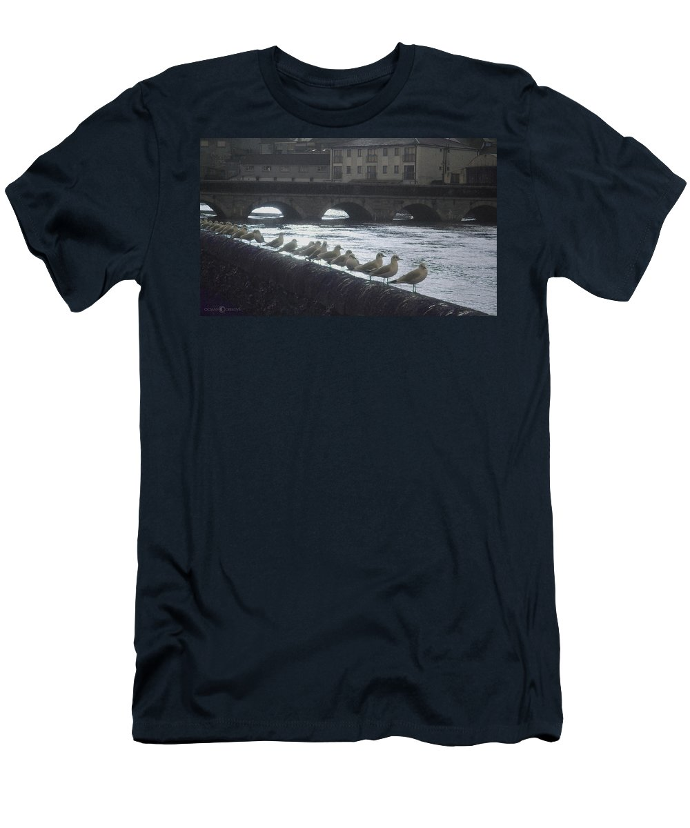 Birds Men's T-Shirt (Athletic Fit) featuring the photograph Line Of Birds by Tim Nyberg