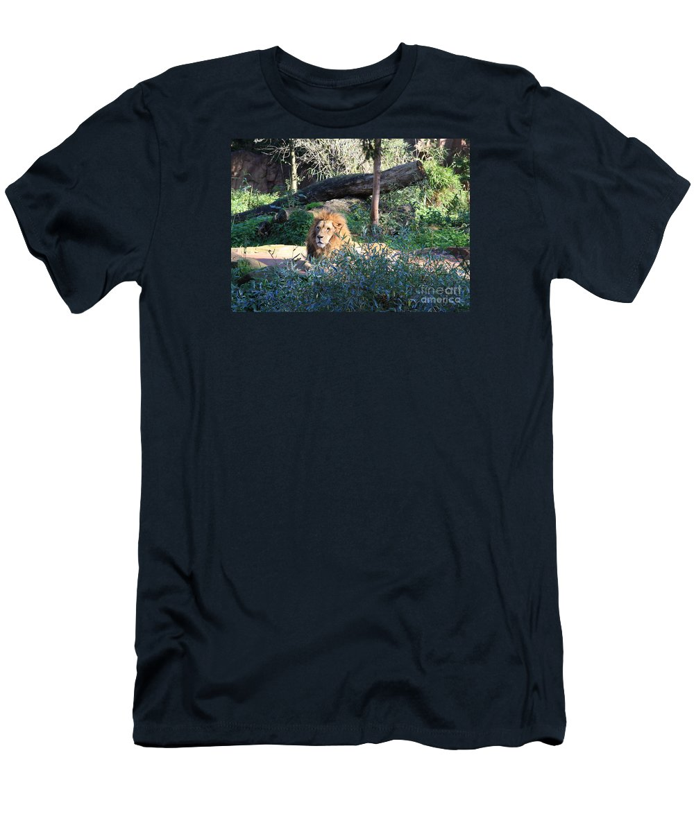 Lion Men's T-Shirt (Athletic Fit) featuring the photograph Lying Lion by Christiane Schulze Art And Photography