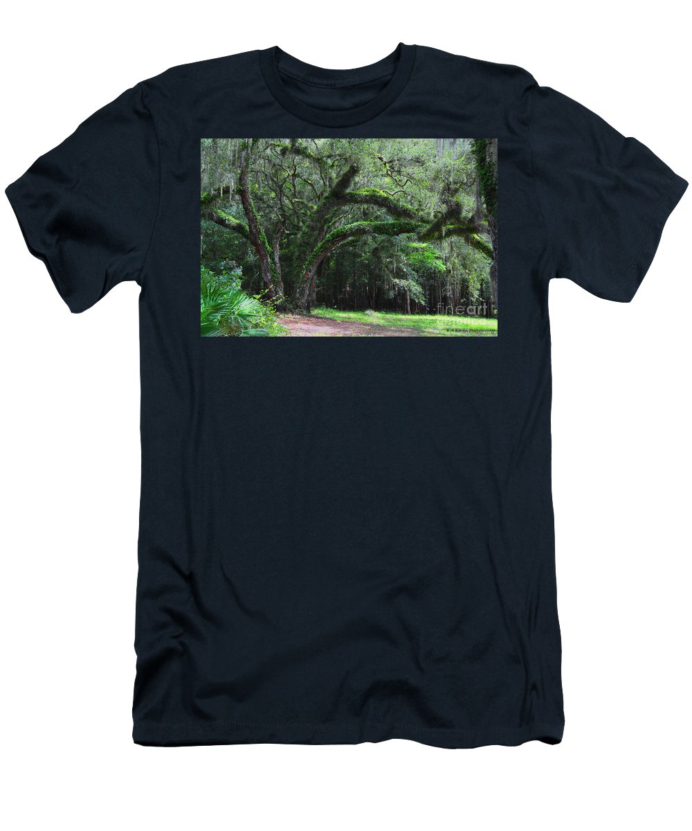 Oak Tree Men's T-Shirt (Athletic Fit) featuring the photograph Majestic Fern Covered Oak by Barbara Bowen