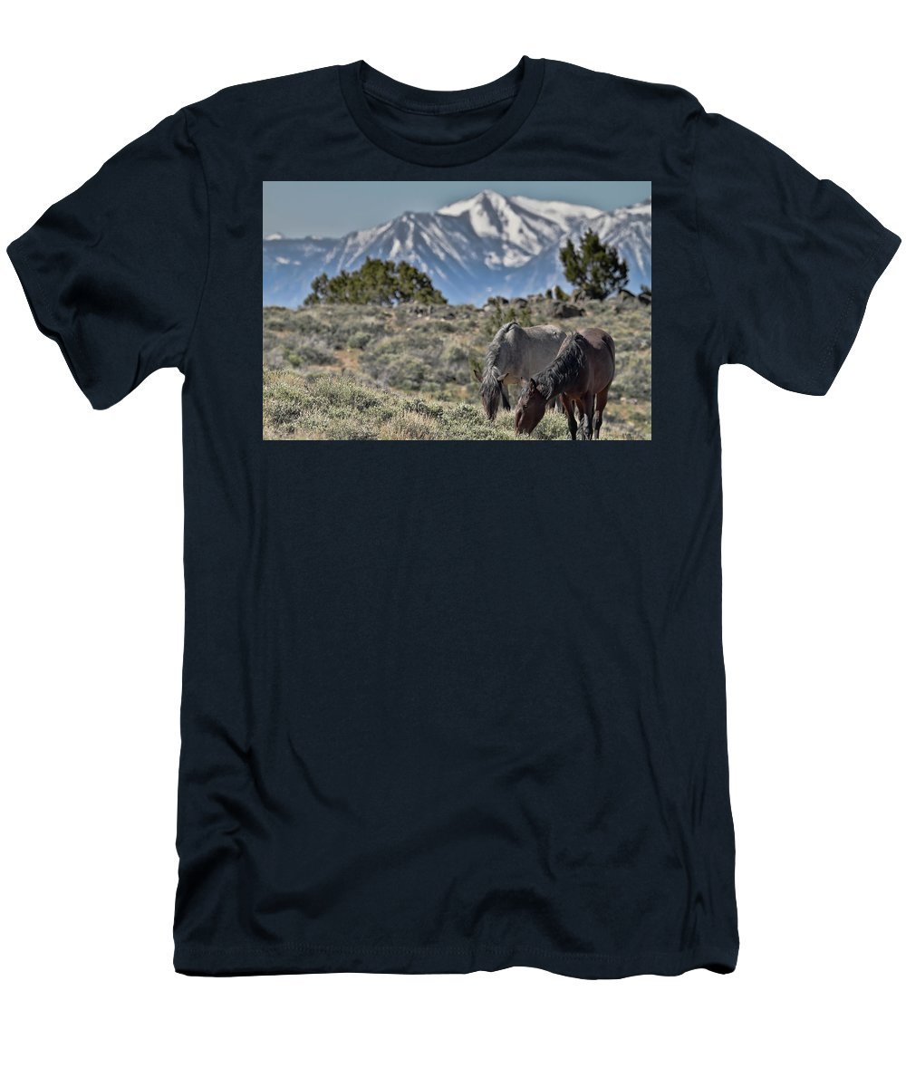 Horse Men's T-Shirt (Athletic Fit) featuring the photograph Mustangs In The Sierra Nevada Mountains by Waterdancer