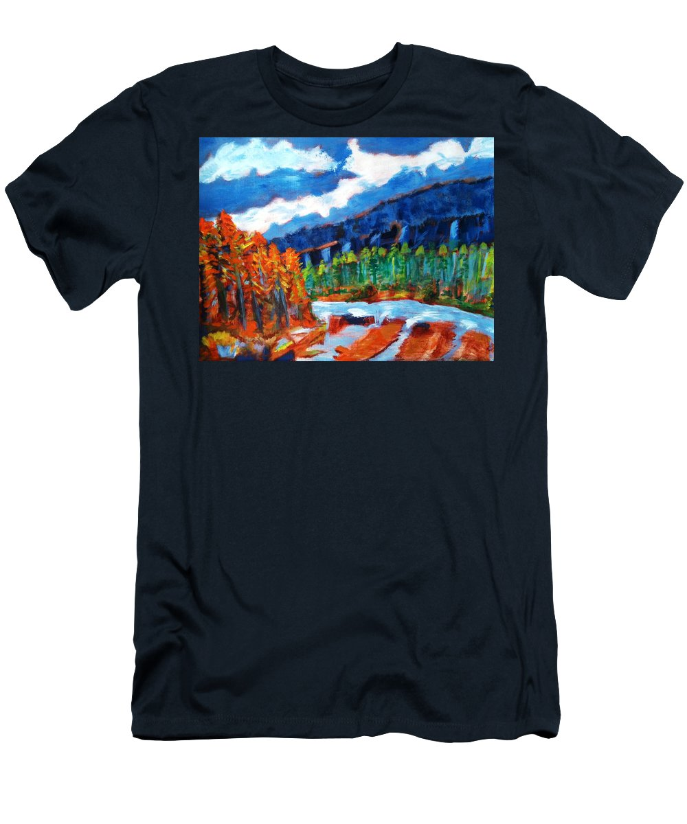 Mountains Men's T-Shirt (Athletic Fit) featuring the painting Naturals by R B