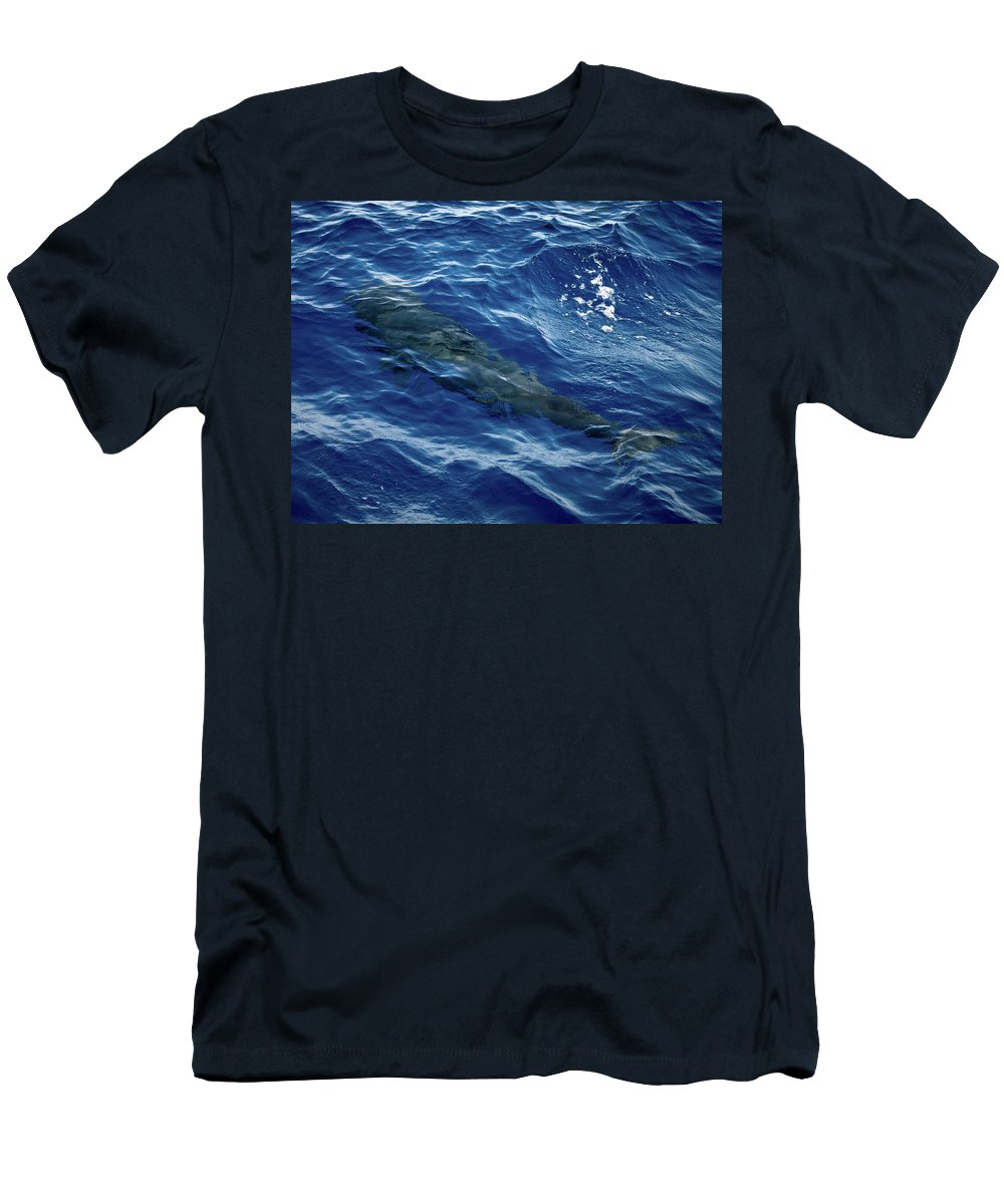 Valasretki Men's T-Shirt (Athletic Fit) featuring the photograph Pilot Whale 4 by Jouko Lehto