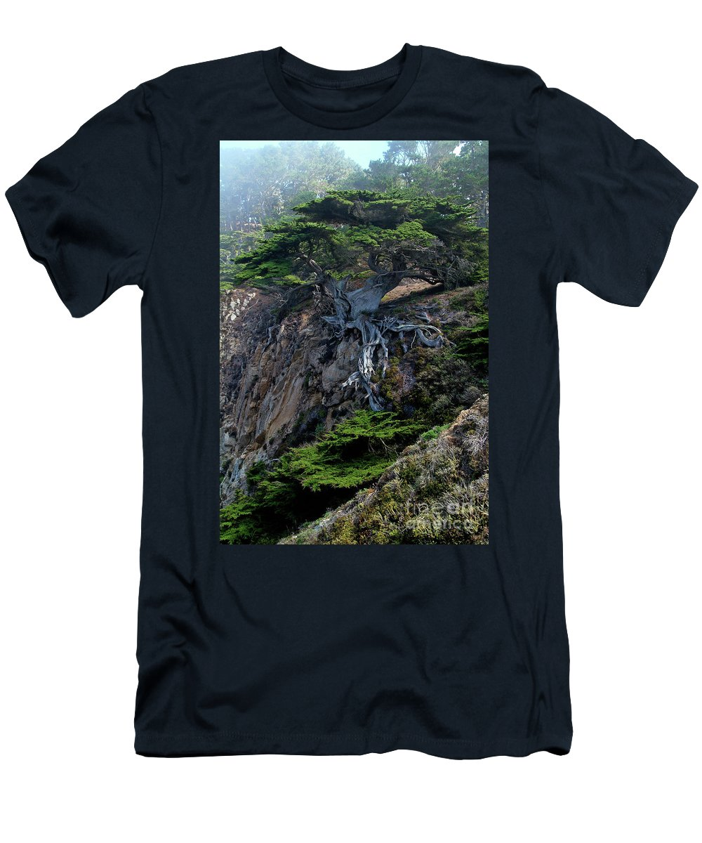Landscape Men's T-Shirt (Slim Fit) featuring the photograph Point Lobos Veteran Cypress Tree by Charlene Mitchell