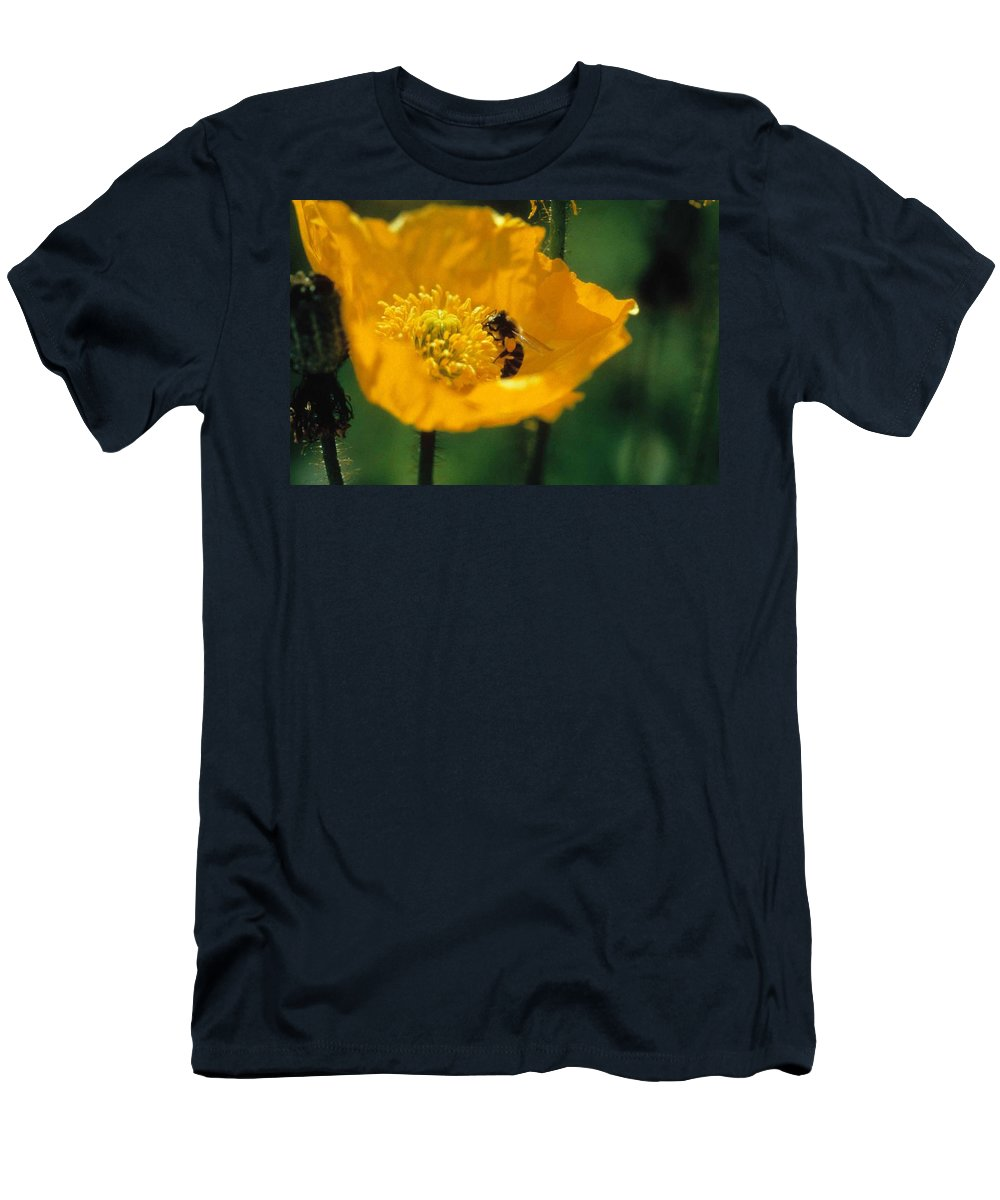 California Poppy Men's T-Shirt (Athletic Fit) featuring the photograph Poppy With Bee Friend by Laurie Paci