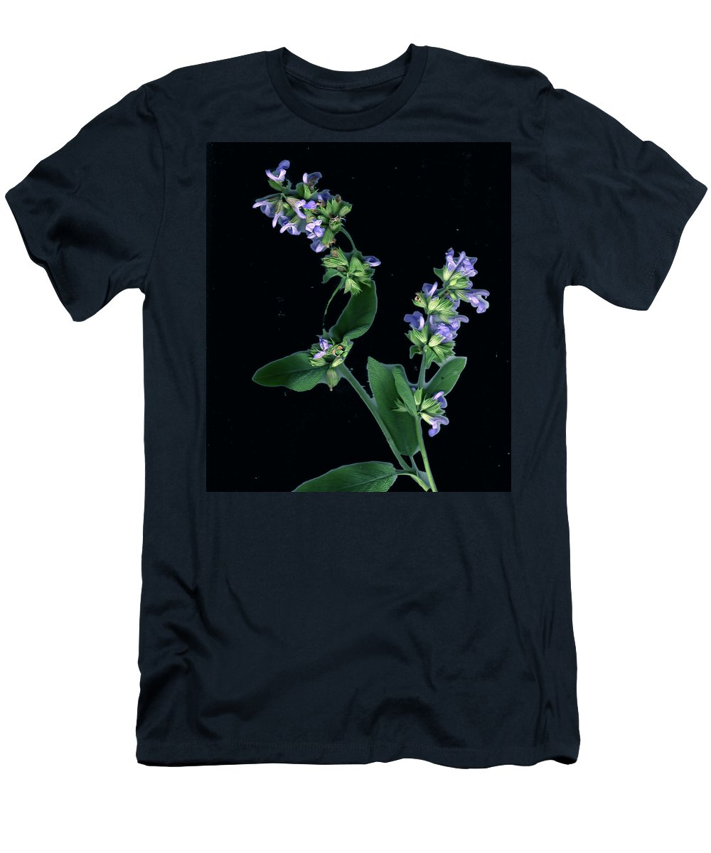 Men's T-Shirt (Athletic Fit) featuring the photograph Sage Blossom by Wayne Potrafka