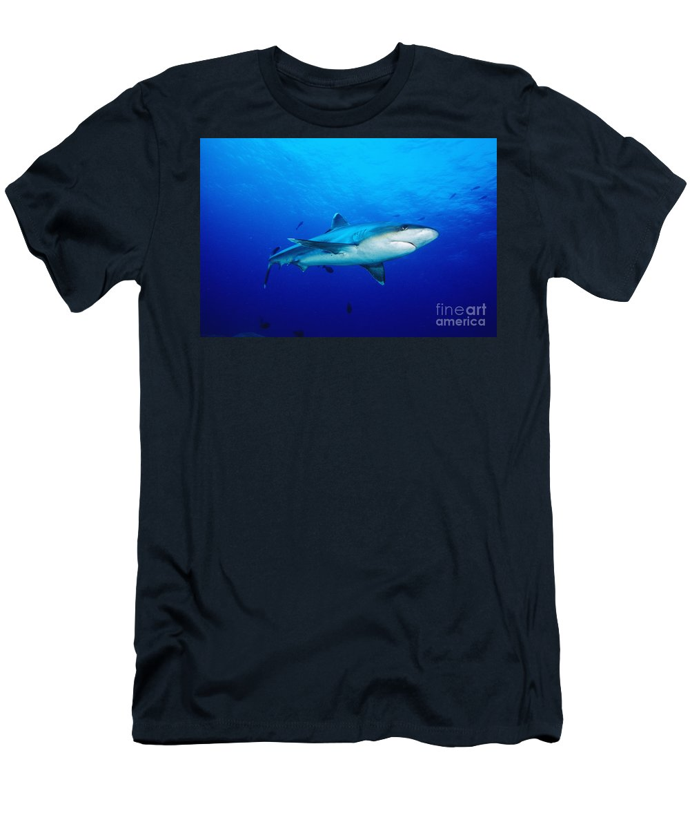 Above Men's T-Shirt (Athletic Fit) featuring the photograph Silvertip Shark In Thailand by Dave Fleetham - Printscapes