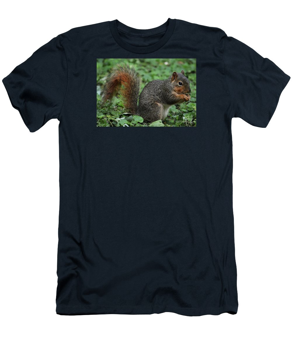 Nature Art Squirrel Portrait Garden Cute Wildlife Outdoors Wood Print Canvas Print Metal Frame Poster Print Available On Greeting Cards Tote Bags Mugs Phone Cases T Shirts Pouches Shower Curtains Weekender Tote Bags And Throw Pillows Men's T-Shirt (Athletic Fit) featuring the photograph Squirrel Portrait # 6 by Marcus Dagan
