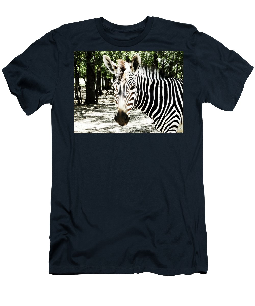 Zebra Men's T-Shirt (Athletic Fit) featuring the photograph Stripes And Symmetry by Douglas Barnard