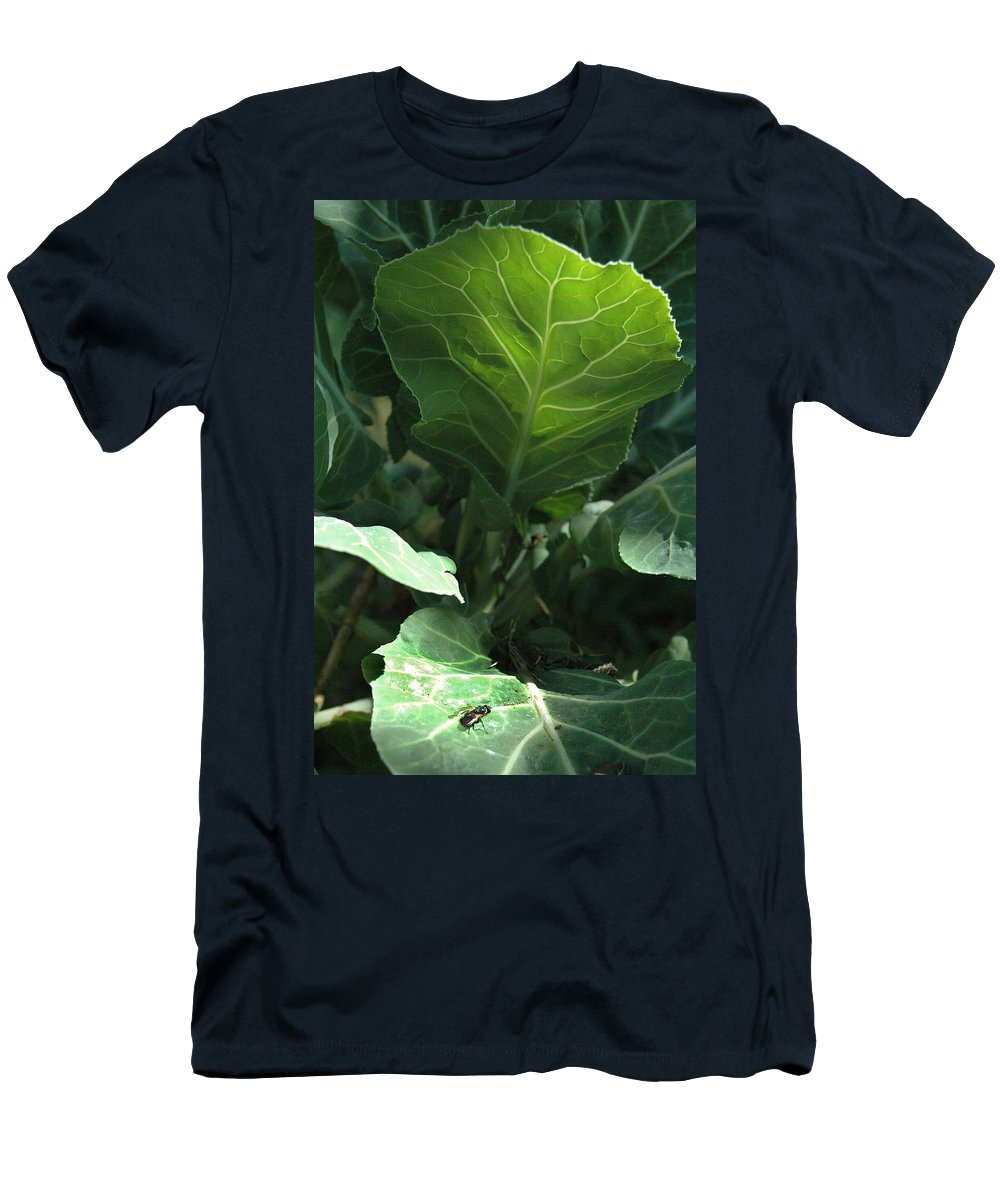 Cabbage Men's T-Shirt (Athletic Fit) featuring the photograph Super-fly Cabbage by Trish Hale